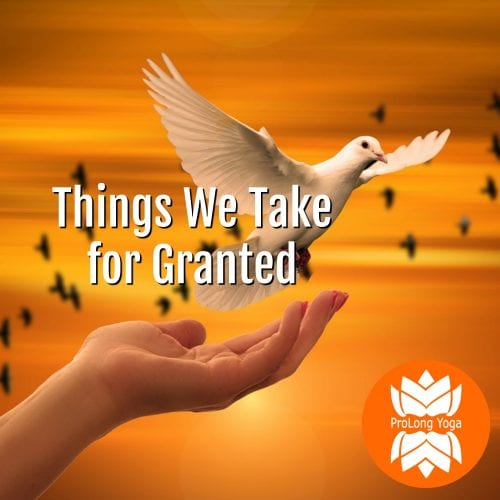 Things we take for granted